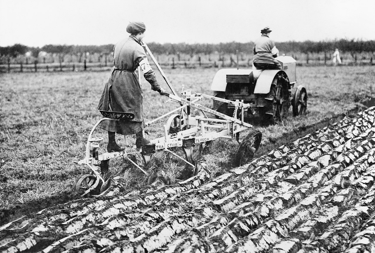 Agriculture in Britain during the First World War - DP. 1914. Source : Imperial War Museum
