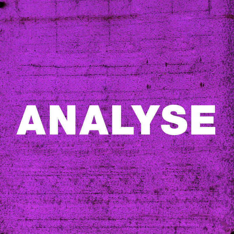 Analyse Féminismes